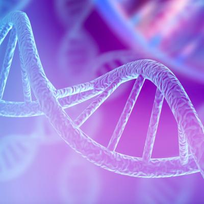 Epigenetics, Energy, and Human Potential Optimization